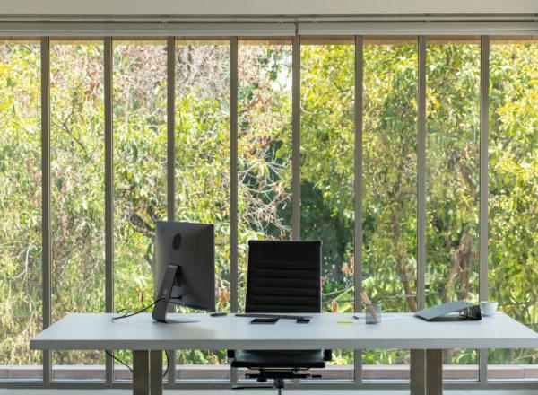 flexplek met bureau en computerscherm op aantrekkelijk kantoor met bomen